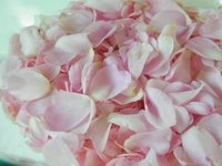 how to make rose petal jelly tutorial recipe