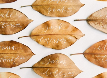 Would work just as well on green leaves. Image from Once wed.